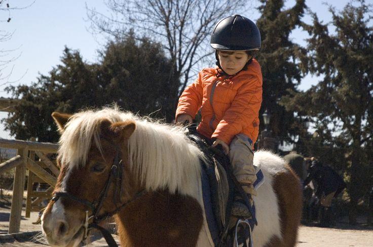 Hoy hemos ido a montar en pony y Pablo se lo ha pasado genial aunque estaba muy serio. La luz es de mediodía. F4.5 1/8000