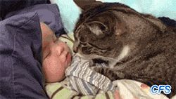 I love you human baby now give me a kiss!