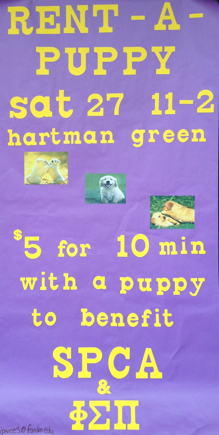 Rent-a-Puppy • benefiting the SPCA and Phi Sigma Pi