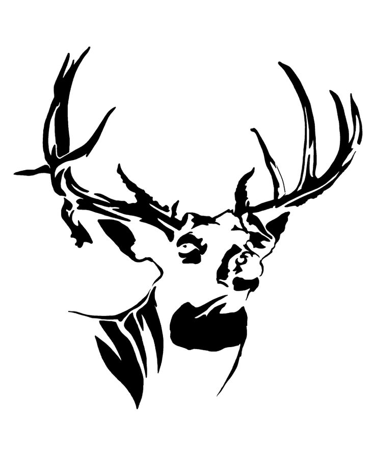 Whitetail Mossy Buck Head Decal