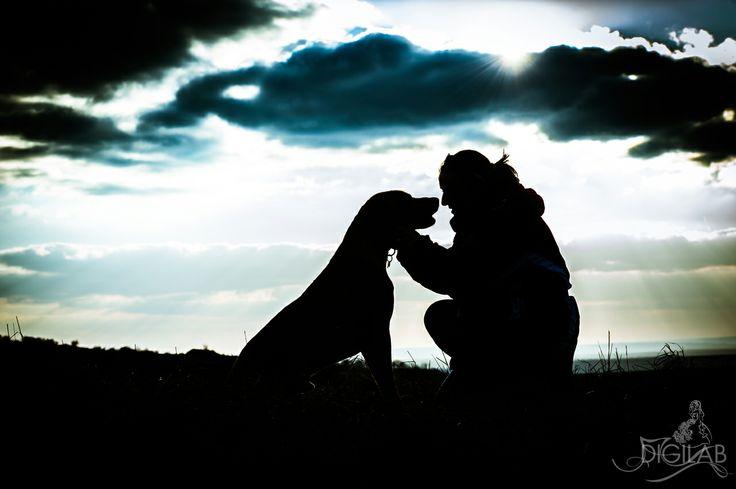 Kutyaséta vége #dog, #sunset, #sky, #ridgeback