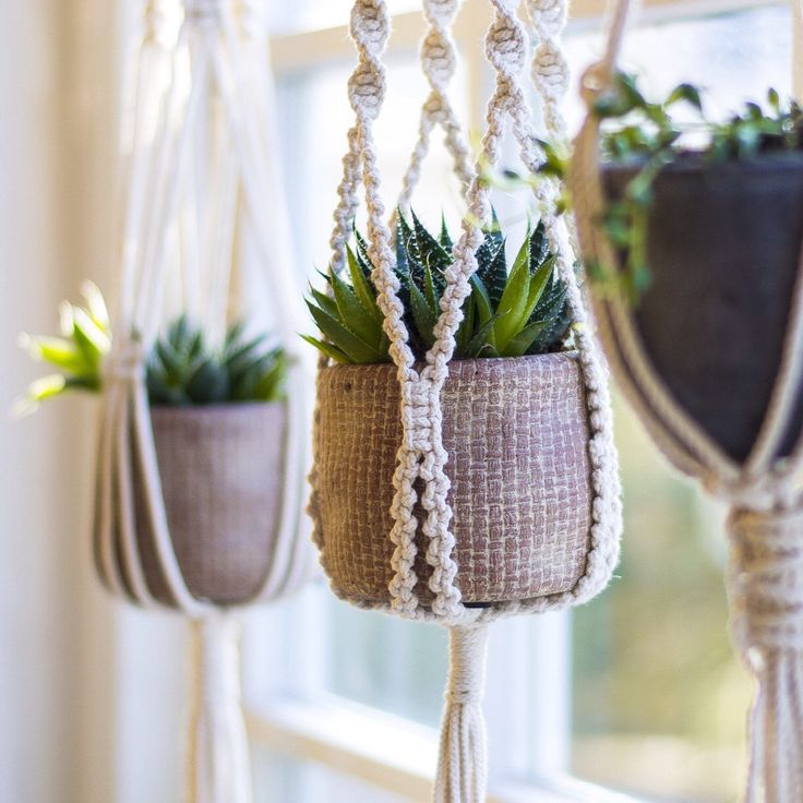 Love this grouping of macrame plant hangers