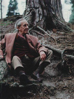 Tolkien...and tree roots...almost too much