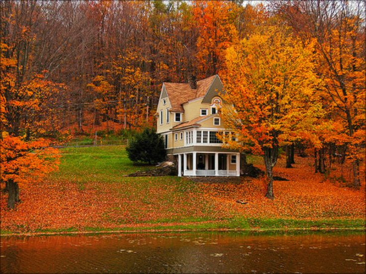 Upstate New York Fall Hd Wallpaper 230 Best Fetching Fall Images On Pinterest Autumn