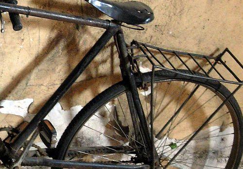Bicicletas, Sonia Carroza Antiguedades