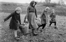 Kleinbäuerin und Kinder beim Steinelesen auf dem Feld 1928-1932 Foto: Kurt Beck, Deutsche Fotothek