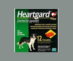 7 best Heartworm for Dogs images on Pinterest Dog pounds For dogs