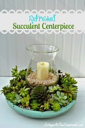 Refreshed Succulent Centerpiece, for outside--use the glass from an old light fixture and any rain will drain right through