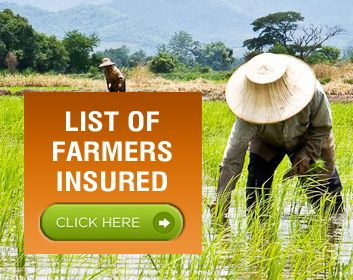PCIC and Cooperatives in Region VIII Agree to Insure More Farmers | Philippine Crop Insurance Corporation
