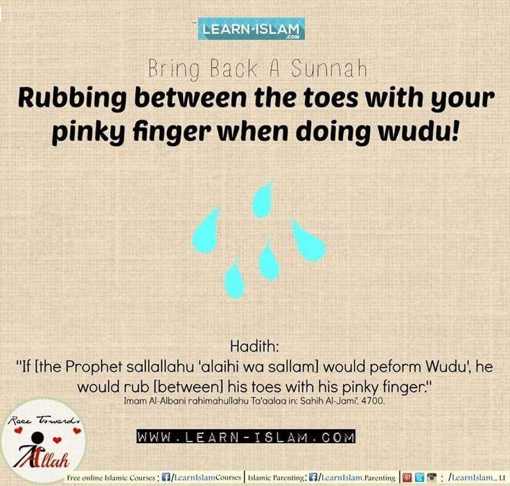 #Islam #Quran #Sunnah #Hadeeth #Hadith #Muslim #Aqeedah #Ummah #Muslimah #Hijad #Beard #Niqab #Niqabi #Niqabis #Deen #Dawah #Tawheed #LearnIslam #ForgottenSunnah #ReviveaSunnah #Fatiha #Salah #Wudoo