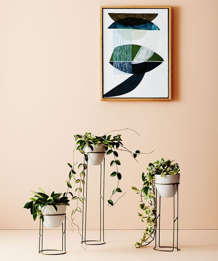 The Halo plant stand is an elegant addition to any home. Available in three different sizes, you can choose your favourite size or cluster three together to make a statement. | huntingforgeorge.com