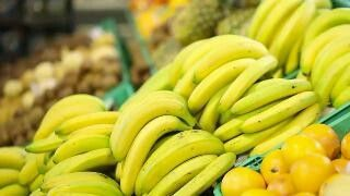 """Worldwide Banana Crisis Sparked by Panama Disease  Even after finding an alternative type of banana, a disease spreading across the globe is still putting the fruit's future in peril.  Widely known as """"Panama disease"""" or """"Fusarium wilt,"""" the fungal disease spread quickly from bananas in Central America to the majority of the world's plantations, causing farmers to burn down their crops.  https://weather.com/news/news/bananas-panama-disease-fusarium-wilt-gros-michel-cavendish"""