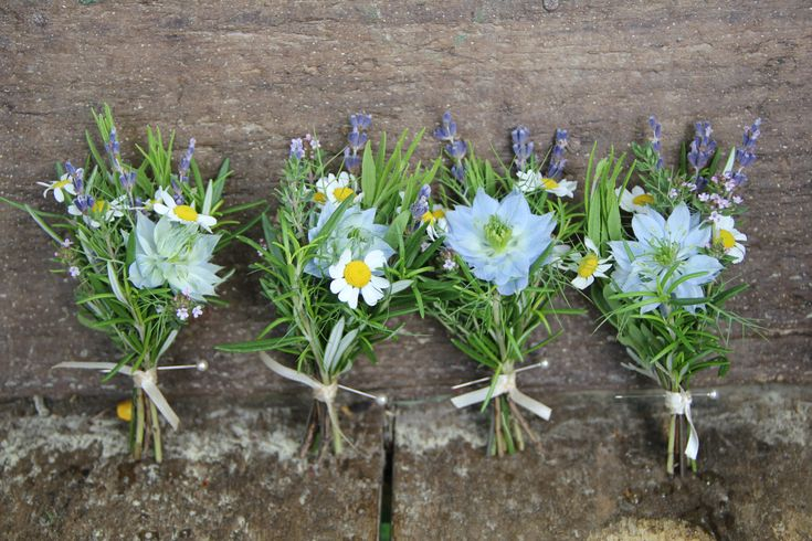 Herb buttonholes with nigella
