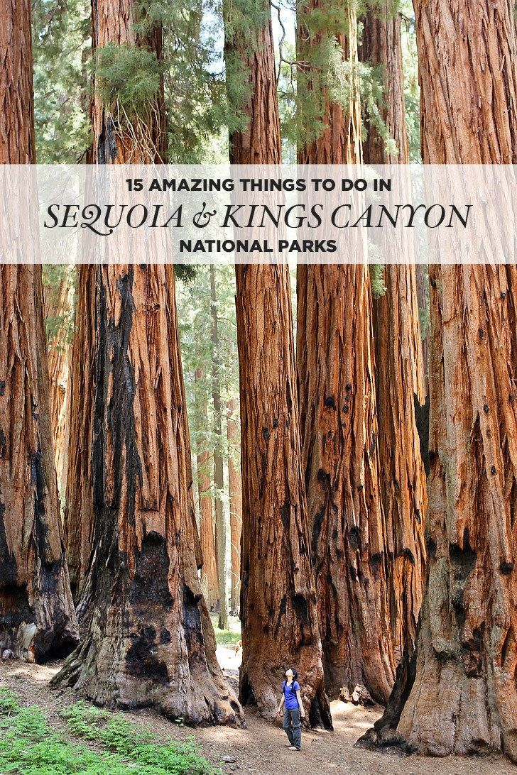 California Map Sequoia National Park%0A    Amazing Things to Do in Sequoia National Park   Kings Canyon