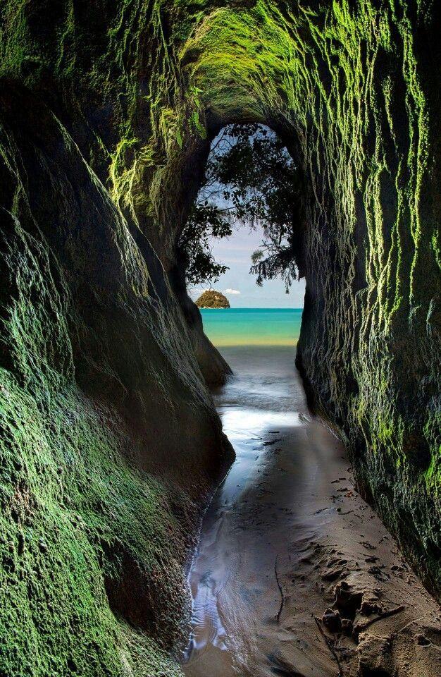 Abel Tasman National Park in New Zealand
