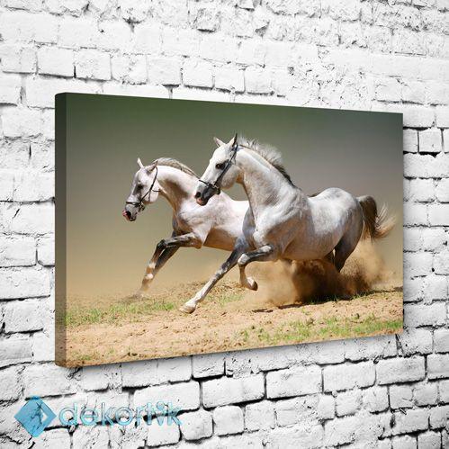 Beyaz Atlar Tablo #hayvan_tabloları