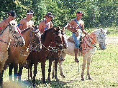 """Kadiweu people try to recover the Pantaneiro horse. Blog do Armando Anache e """"A luta de um repórter ..."""" http://aaanache.googlepages.com/home: Índios kadiweu querem resgatar o cavalo pantaneiro. Also in http://www.pick-upau.org.br/turma/blog_do_pick_upau/blogando_2008/blog_06_2008/blog_pick_upau_06_2008.htm"""