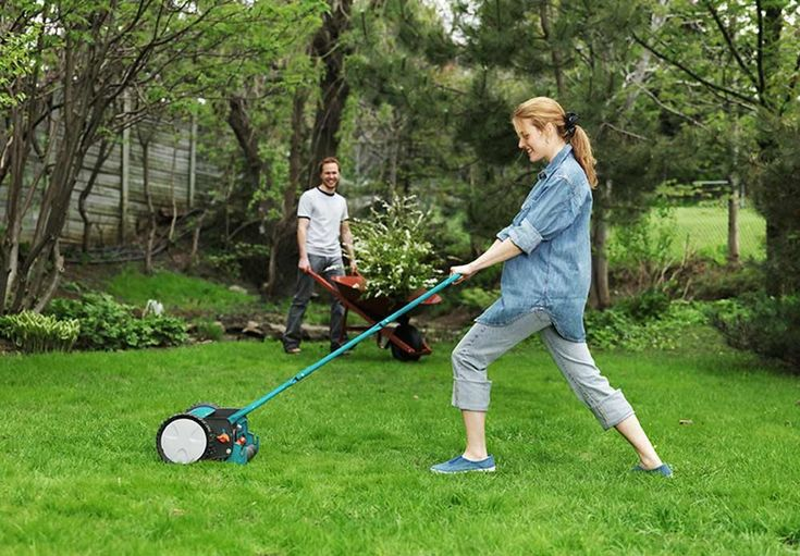 Plen uten problemer - mose, ugress, sopp i gressplen - viivilla.no