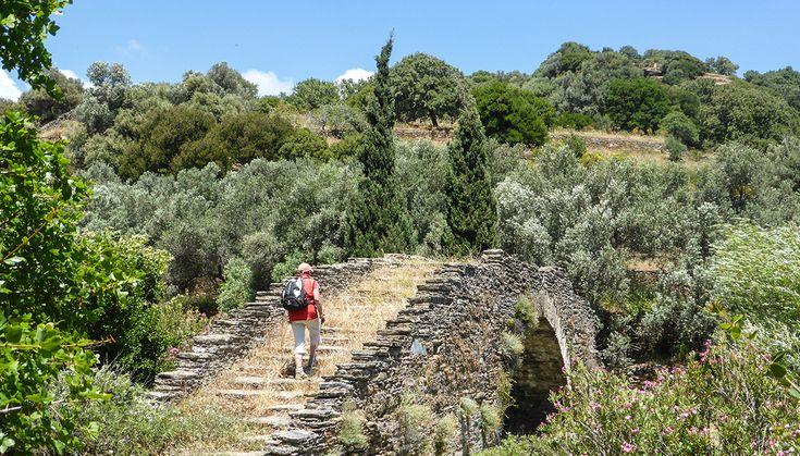 Walking in Andros' fertile hinterland.