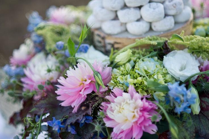47 best Adenium Thailand images on Pinterest  Desert rose