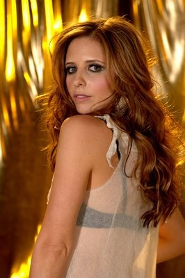 Sarah Michelle Gellar with Balayage