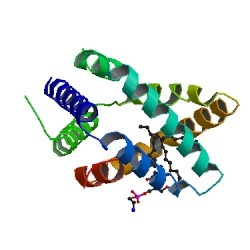 RCSB Protein Data Bank - RCSB PDB - 1N69 Structure Summary