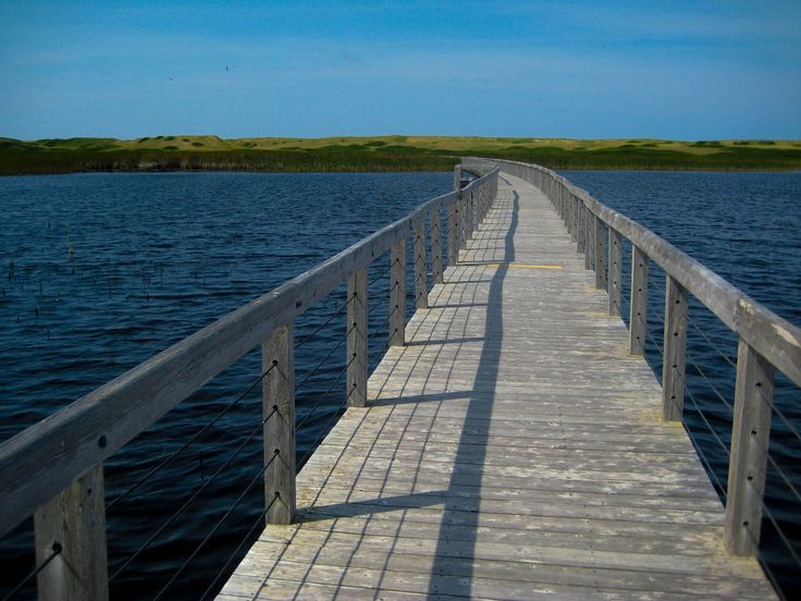 #GreenwichNationalPark - the floating walkway at Greenwich National Park in P.E.I. Canada.  http://www.farawayvacationrentals.com/view-blog/Greenwich-National-Park/253