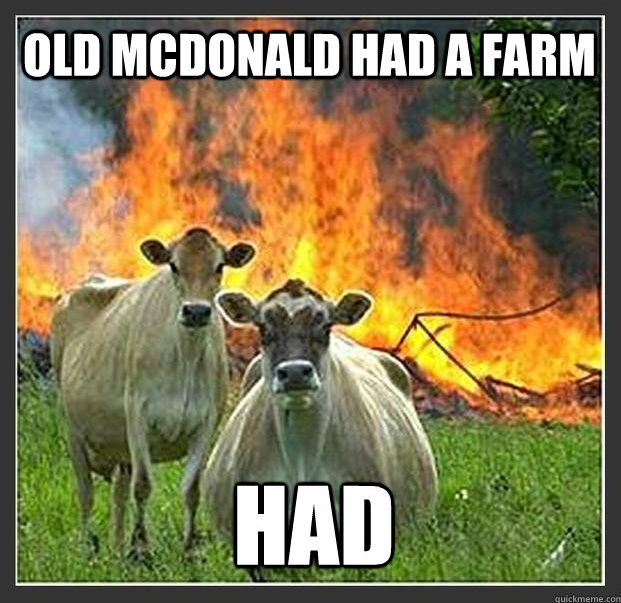 This is why people eat cows. First Miss Ole Leary's Cow starts the Great Chicago Fire and now this!