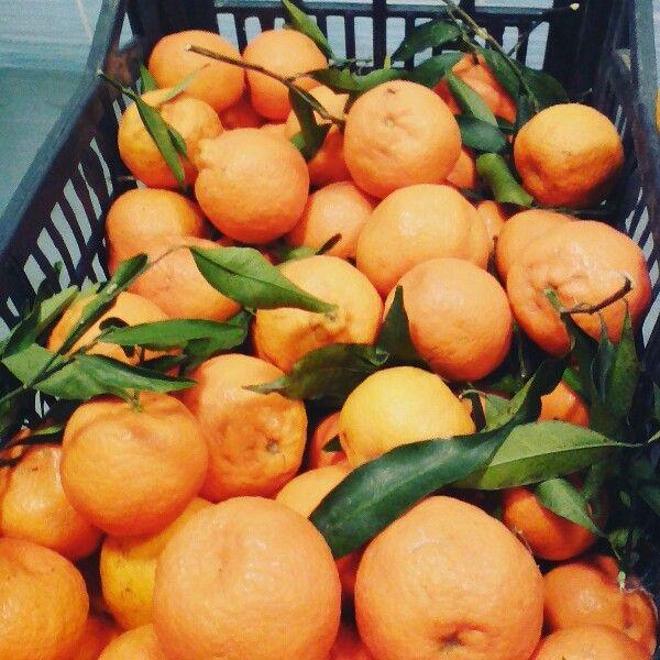 Clementine madarine