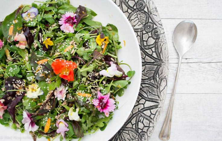 Well Nourished⎮Herby Green Salad, toasted seeds, orange balsamic vinaigrette - Nature has given us an abundance of greens in winter to keep our…