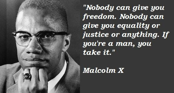 Malcolm X Quotes 11 Best Malcom X Quotes Images On Pinterest  Malcolm X Black