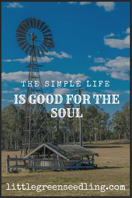 My experience of living the simple life on a permaculture farm with limited access to technology, and the spiritual and emotional benefits I experienced.