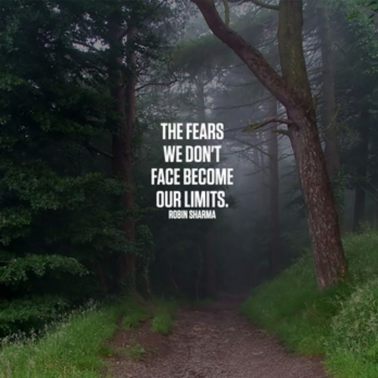 The fears we don't face become our limits. Robin Sharma