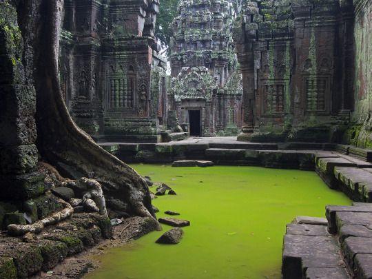 Ta Prohm - Cambodia (by Peter Nijenhuis)