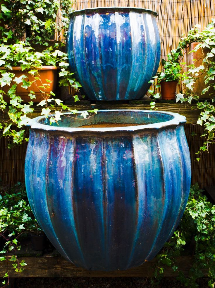 Large Blue Glazed Pot Large Selection Of Garden Balcony Pots Buy Online Or Visit Our Plant Pot Shop London Blue Plants Green Plants Growing Flowers