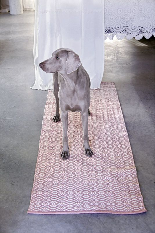 BERGEN cotton rug in rose/natural - available in sizes 55 x 120 cm, 70 x 200 cm, 140 x 200 cm, 200 x 300 cm. Also available in grey/natural and khaki/natural!