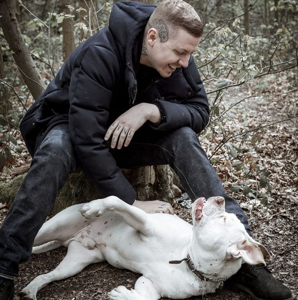 Professor Green: Pitbulls are safe dogs - owners are the problem