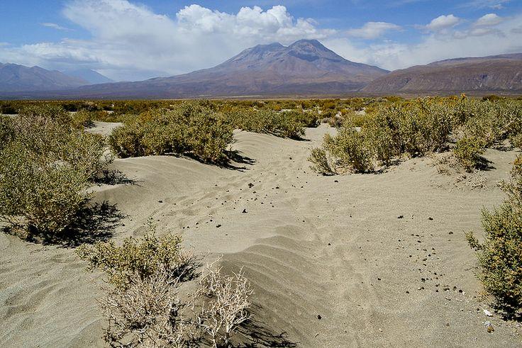 Cerro Paniri