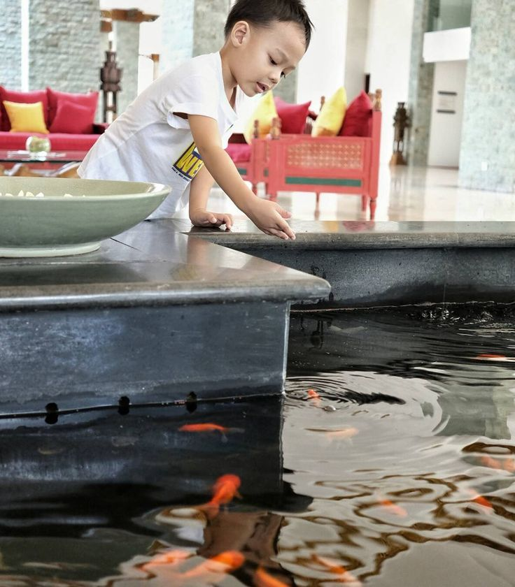 #Staycation #Bali. Jagoan kecil kami selalu senang bila dapat kesempatan untuk memberi makan ikan. Seperti di lobby hotel @TheSintesaJimabaran ini.