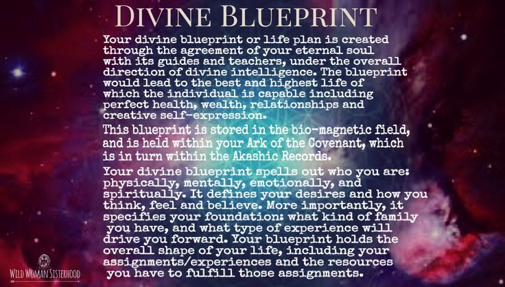 DIVINE BLUEPRINT Your divine blueprint or life plan is created through the agreement of your eternal soul with its guides and teachers, under the overall direction of divine intelligence. The blueprint would lead to the best and highest life of which the individual is capable including perfect health, wealth, relationships and creative self-expression. This blueprint is stored in the bio-magnetic field, and is held within your Ark of the Covenant, which is in turn within the Akashic Records…