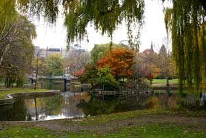 Fall Foliage Tours - Bus Tours from Boston to New England