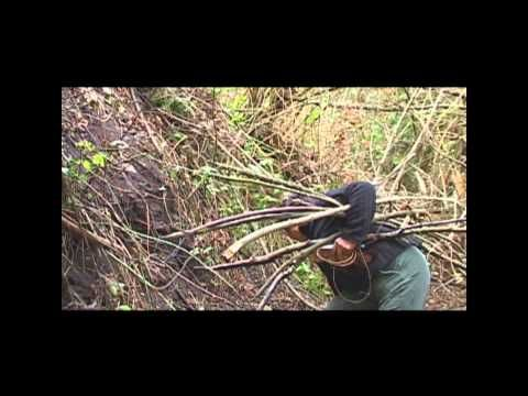SONIDOS ANCESTRALES MAPUCHE - YouTube
