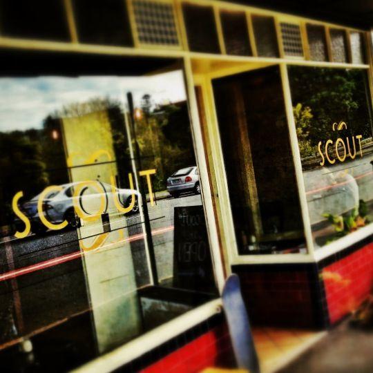 Scout in Brisbane, QLD
