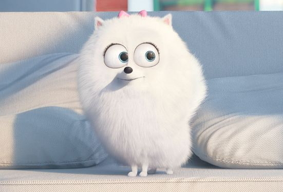 "I got Gidget! Which ""Secret Life Of Pets"" Character Are You?"