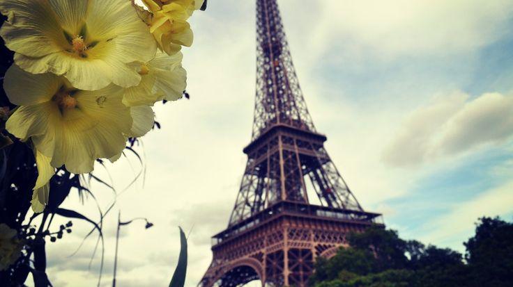 Freiheit, Gleichheit, #Gartenglück: #Paris will Vorbild für die Metropolen dieser Welt werden Paris soll dank einer bislang einzigartigen Initiative grüner werden! Daher würde kürzlich ein Gesetz beschlossen, dass jeder Pariser urbane Gärten anlegen darf. So sollen bis 2020 rund 100 Hektar Grünfläche entstehen.