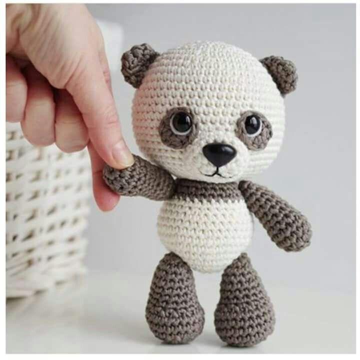 Adorable Ami Bear Cub