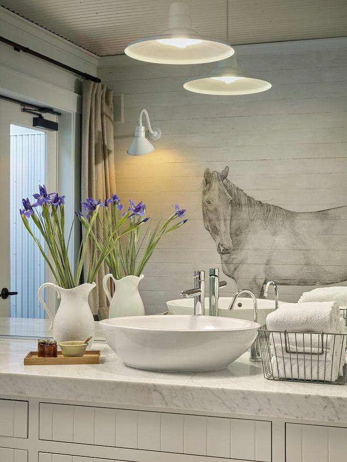Horse mural in one of 3 new treatment rooms