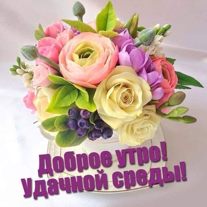 сердцах побольше картинки с цветами просто доброе утро среды последний поспешил откреститься