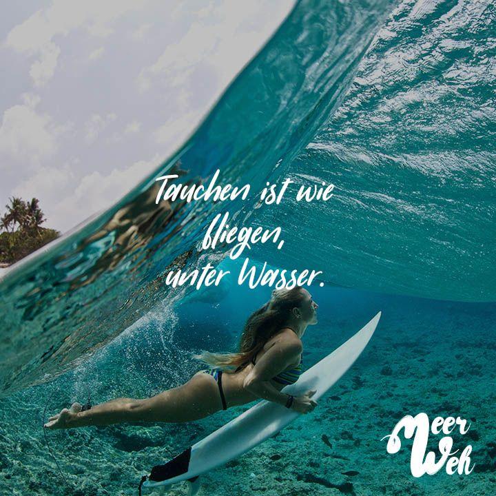 Tauchen ist wie fliegen, unter Wasser | beautY | Quotes, Diving