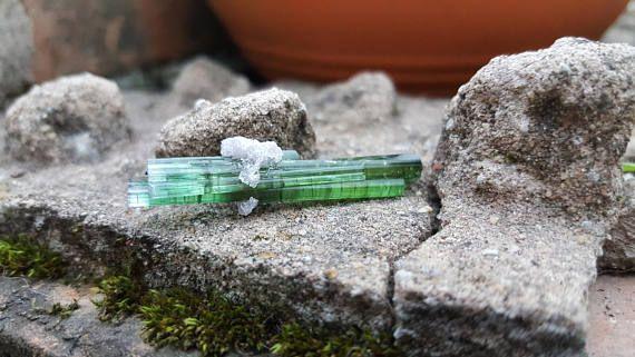 green watermelon tourmaline crystal